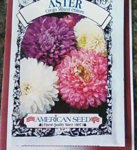 Fun Marketing Ideas: Walker Road flower Flyer
